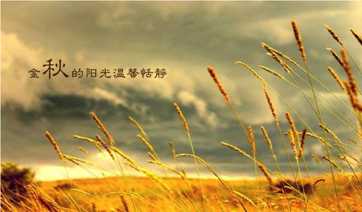 描写秋天的优美句子