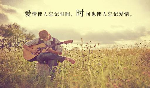 感动的爱情句子